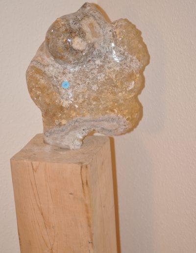 Georg Glettler: Brust